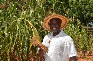 Bougouna, Sogoba, Directeur de l'ONG AMEDD