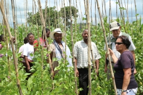 Africa RISING ESA external review team praises research work, calls for improved efforts to ensure technologies are adopted by small holder farmers
