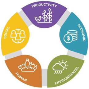 SI toolkit helps researchers assess the sustainability of their innovations